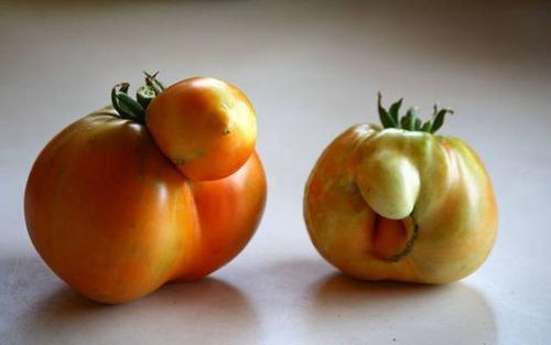 人や動物に見える野菜や果物の画像(46枚目)