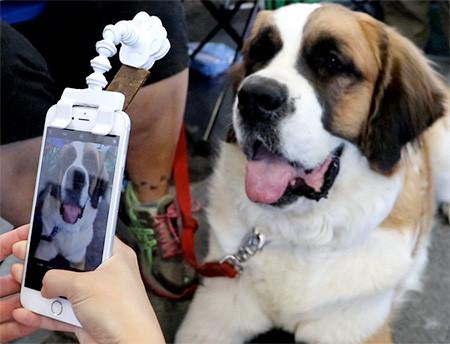 犬の笑顔が撮れるスマホ用ガジェット05
