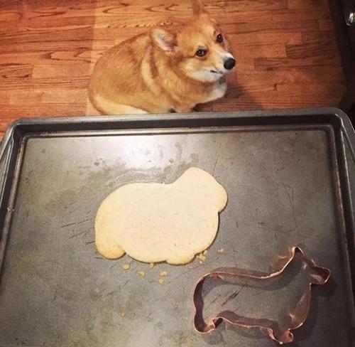 料理の成功例と失敗作の比較の画像(6枚目)