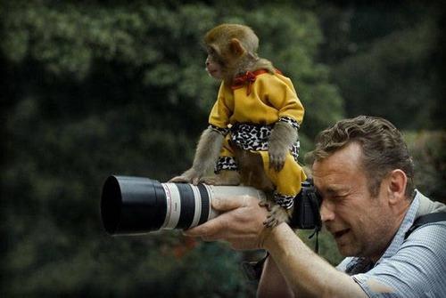カメラマンの苦労の画像(34枚目)