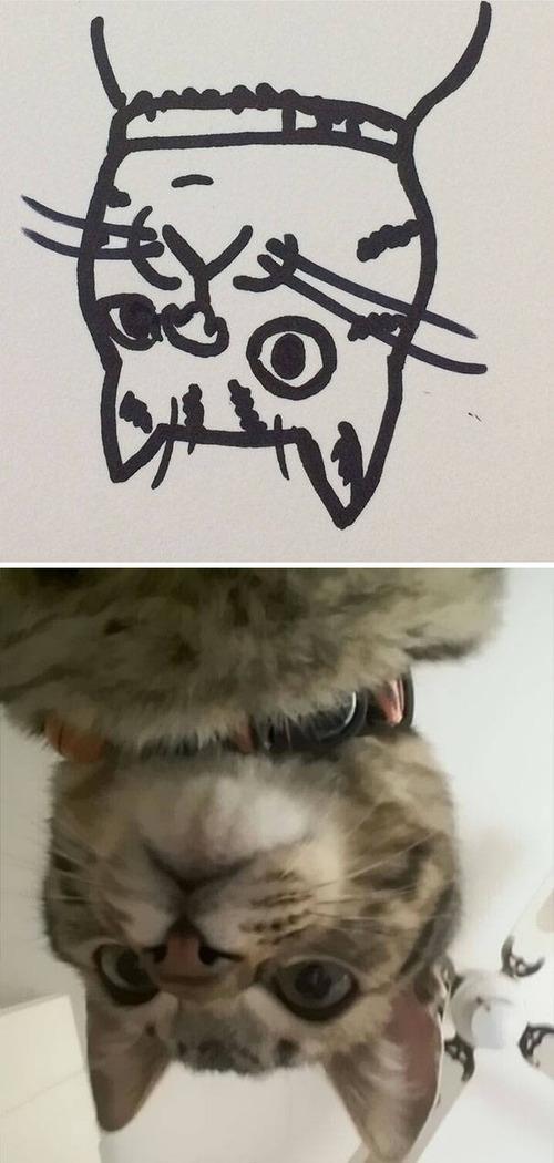 猫のイラストの画像(10枚目)