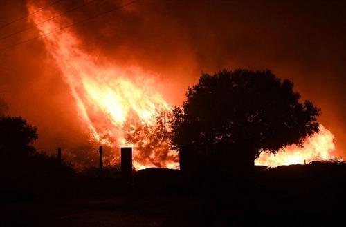 フランスのマルセイユの山火事の画像(14枚目)