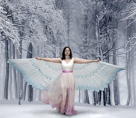 蝶や白鳥に見える美しいマントの画像2