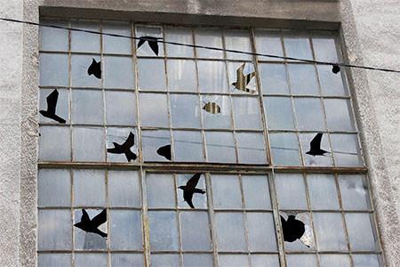割れた窓ガラスのように見えるアートの画像(7枚目)