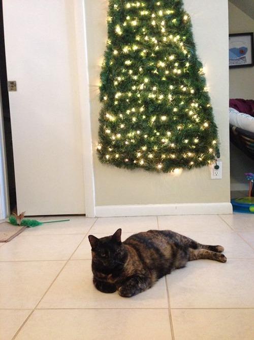 ペットと過ごすクリスマスの画像(19枚目)