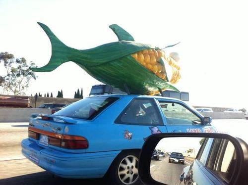 かなりカオスな自動車のカスタム画像の数々!!の画像(16枚目)