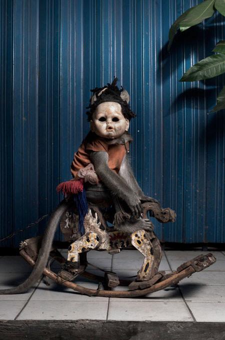 【画像】サルにマスクを被せたら凄まじく怖くなったwwwの画像(8枚目)