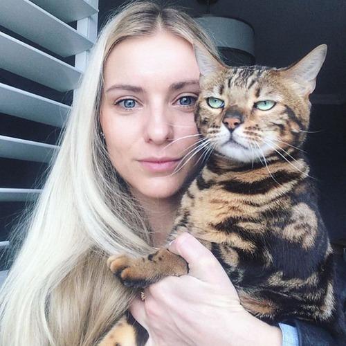 癒そうな猫の画像(1枚目)