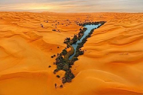 サハラ砂漠にある小さなオアシスが美しすぎて凄い!の画像(1枚目)
