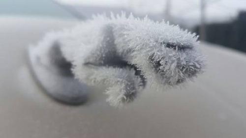 凍っている自動車の画像(35枚目)