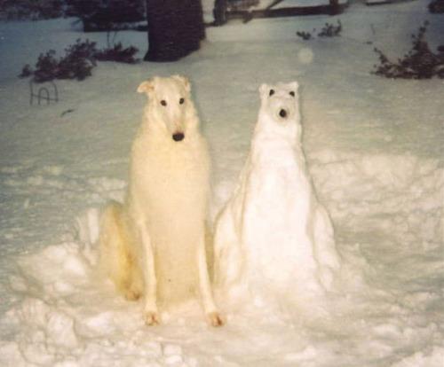 面白い雪だるまの画像(30枚目)