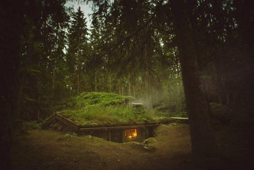 森の中の隠れ家の画像(41枚目)