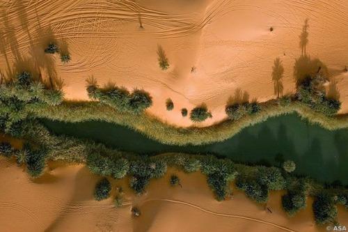 サハラ砂漠にある小さなオアシスが美しすぎて凄い!の画像(3枚目)