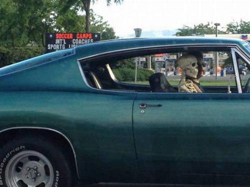 もはや職人技!?自動車やバイクで凄いものを運んでる画像の数々!!の画像(23枚目)