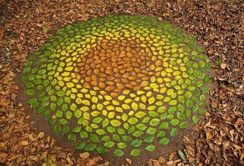 自然の素材を使ったアートの画像(16枚目)