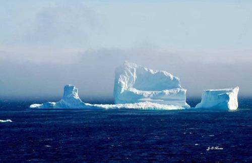 巨大な流氷の画像(15枚目)