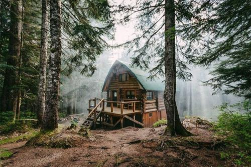 森の中の隠れ家の画像(4枚目)