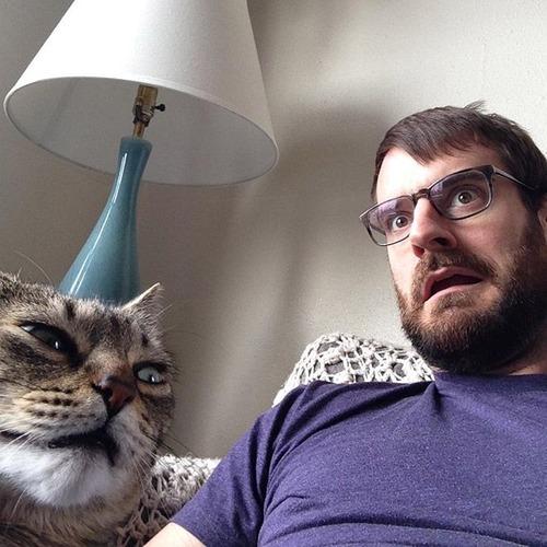 癒そうな猫の画像(6枚目)