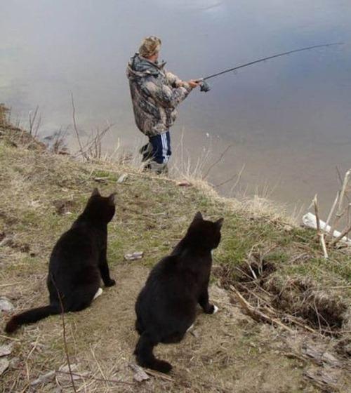 カオスなところで釣りをしている人達の画像(14枚目)