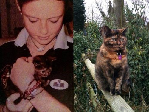 犬や猫の最初に撮った写真と最後に撮った写真の数々の画像(10枚目)