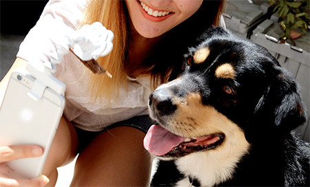 犬の笑顔が撮れるスマホ用ガジェット04