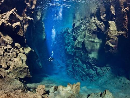 美しく神秘的な水辺の画像(28枚目)