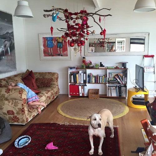 ペットと過ごすクリスマスの画像(11枚目)