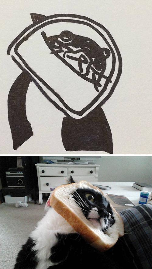 猫のイラストの画像(1枚目)