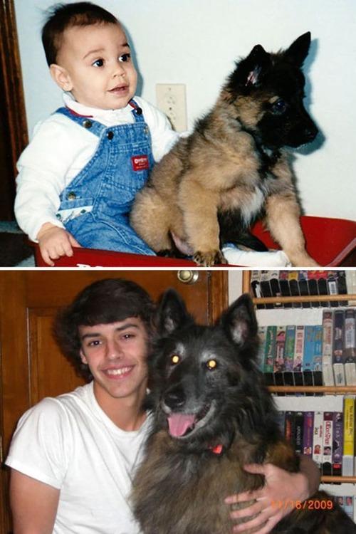犬の成長の画像(10枚目)