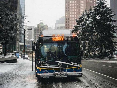 冬を楽しむカナダの人達の画像(11枚目)