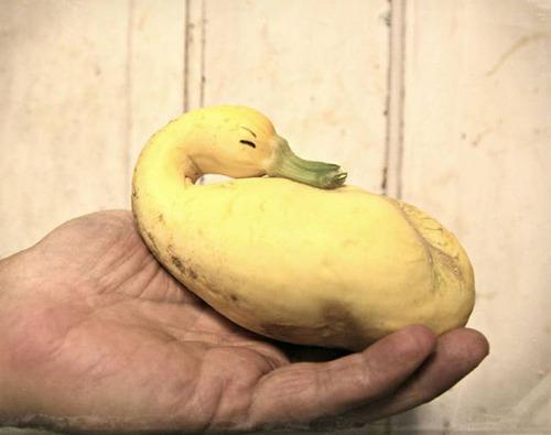人や動物に見える野菜や果物の画像(39枚目)