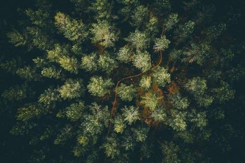 ドローンを使った空撮の画像(20枚目)