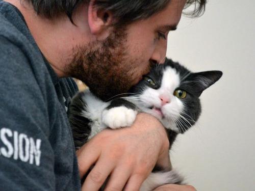 癒そうな猫の画像(18枚目)