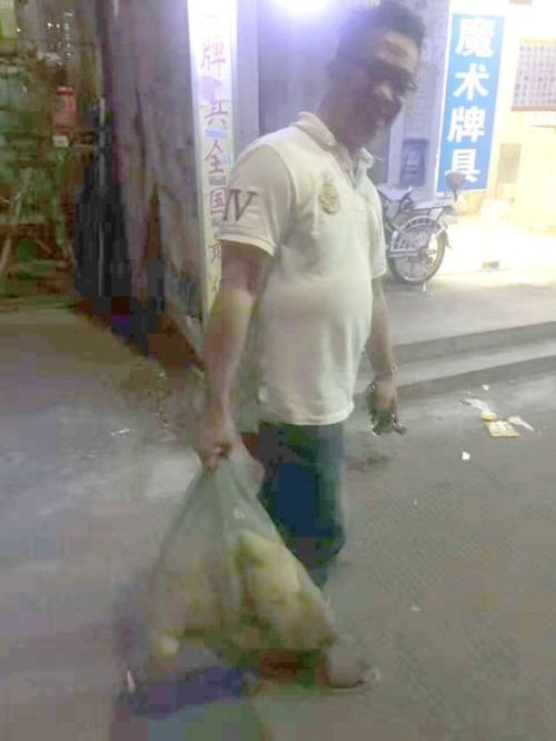 食用で販売されていた犬の画像(2枚目)