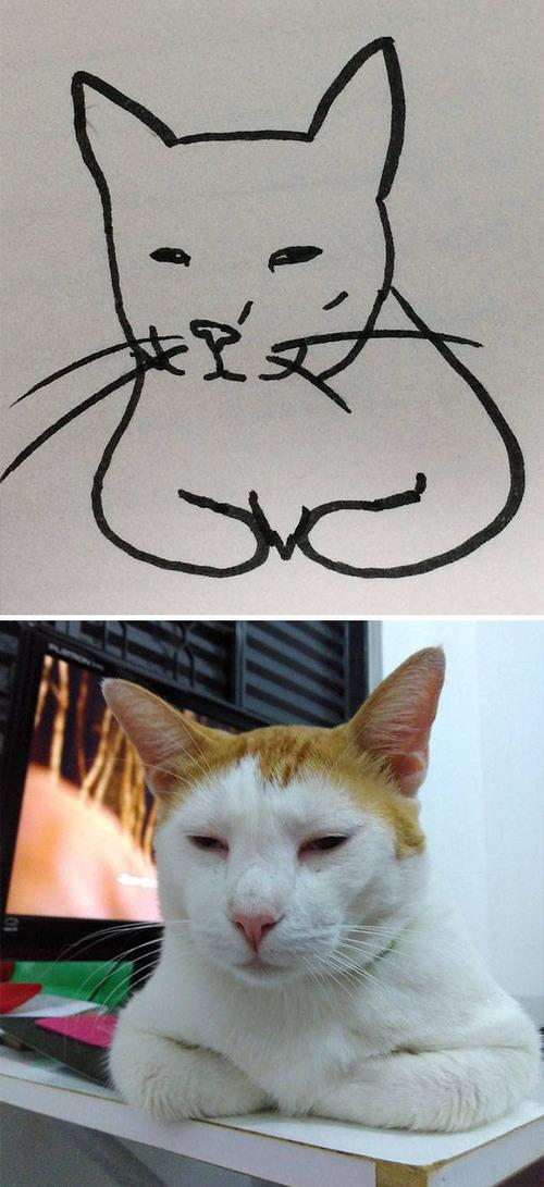 猫のイラストの画像(13枚目)
