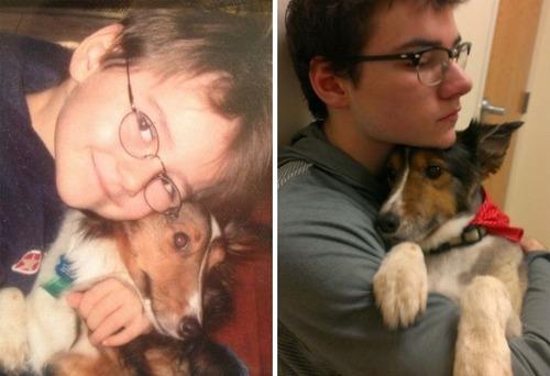 犬の成長の画像(26枚目)
