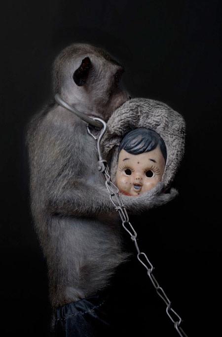 【画像】サルにマスクを被せたら凄まじく怖くなったwwwの画像(7枚目)