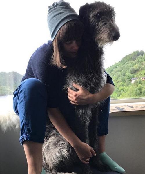 大きすぎる犬の画像(13枚目)