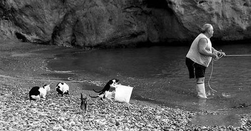 カオスなところで釣りをしている人達の画像(15枚目)