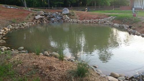 巨大な池の画像(23枚目)