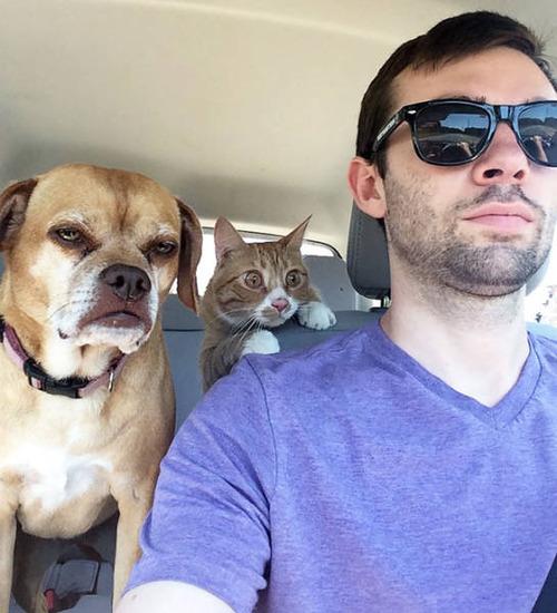 動物に向かう時の犬の画像(3枚目)