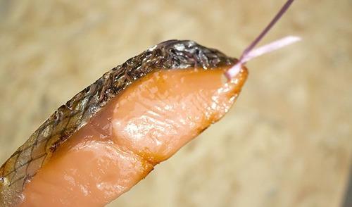 日本品質!リアルすぎて心配になる食べ物のシオリが凄い!!の画像(6枚目)
