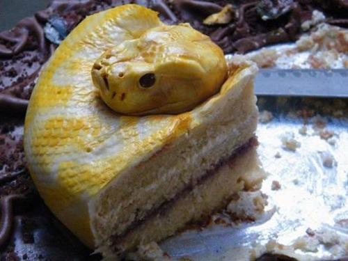 カオスなケーキの画像(2枚目)