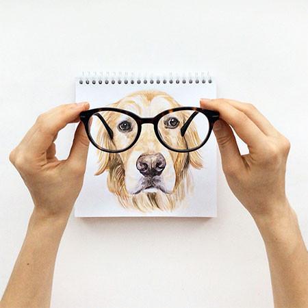 犬の絵が小道具1つで生きてるように見える!!の画像(9枚目)