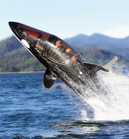 シャチ型の潜水艦04