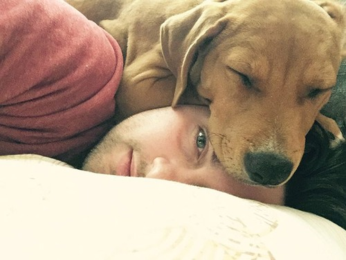 犬は可愛いけど、かなりジャマな感じの犬の画像の数々!!の画像(5枚目)