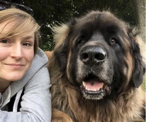 大きすぎる犬の画像(21枚目)