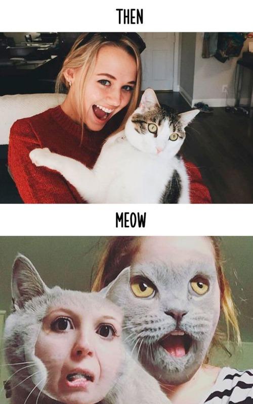 テクノロジーの進化がネコ達に与えた影響の比較画像の数々!!の画像(5枚目)