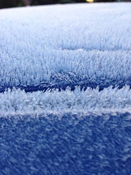 凍っている自動車の画像(15枚目)