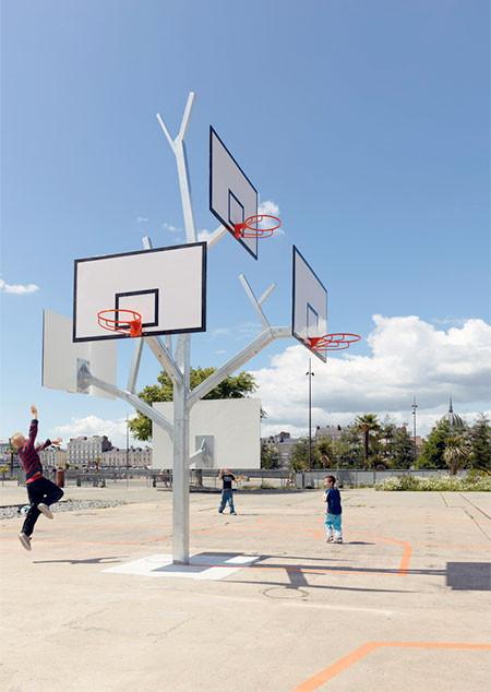 バスケットゴールの木06